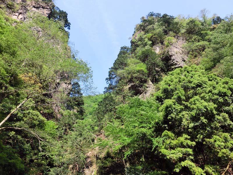 新緑の神戸岩です。